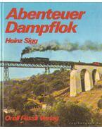 Abenteuer Dampflok