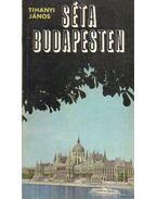 Séta Budapesten