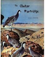 The Chukar Partridge (A Chukar fogoly)