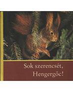 Sok szerencsét, Hengergőc!