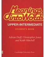 Meaning into Words Upper-Intermediate
