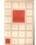 Egy képviselő naplójából