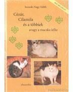 Cézár, Cilamila és a többiek avagy a macska lelke