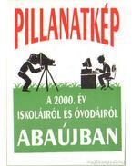 Pillanatkép a 2000. év iskoláiról és óvodáiról Abaújban