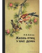 A madarak élete nálunk otthon (Жизнь птиц у нас дома)