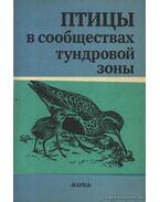Madarak a tundraöv közösségeiben (Птицы в сообществах тундровой зоны)
