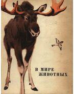 Az állatok világában (В мире животных)
