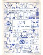 313 fizikafeladat