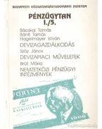 Pénzügytan I./5. - Bácskai Tamás, Bánfi Tamás, Száz János, Brüll Mária, Hagelmayer István