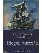 Idegen vitorlák - Bagyigin, Konsztantyin