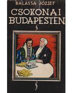 Csokonai Budapesten avagy A mai magyar irodalom (dedikált)