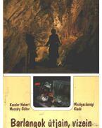 Barlangok útjain, vizein