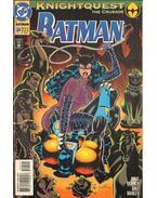 Batman 504.