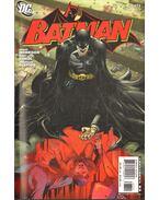 Batman 673.