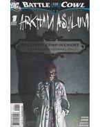Batman: Battle for the Cowl: Arkham Asylum 1.