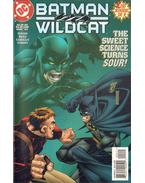 Batman/Wildcat 2.