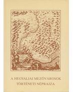 A hegyaljai mezővárosok történetének néprajza - Bencsik János, Viga Gyula