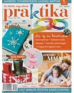 Praktika 2015/1 január - Boda Ildikó (főszerk.)
