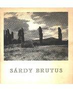 Sárdy Brutus (1892-1970) emlékkiállítása - Bodnár Éva