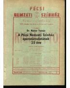 A Pécsi Nemzeti Színház operatársulatának 25 éve