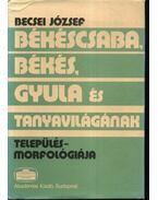Békéscsaba, Békés, Gyula és tanyavilágának település-morfológiája