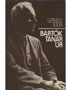 Bartók tanár úr