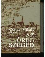 Az öreg Szeged (mini)