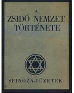 A zsidó nemzet története