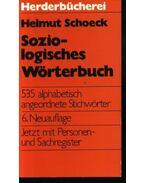 Soziologisches Wörterbuch