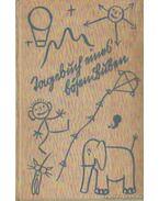 Tagebuch eines bősen Buben - Botstiber, J.