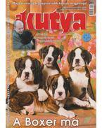 A Kutya LXXIII. évf. 2010/4