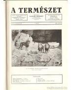 A természet 1940. XXXVI. évf. (teljes)