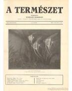 A természet 1934. XXX. évf. (teljes)