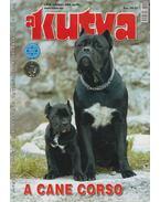 A Kutya LXIX. évf. 2006/4