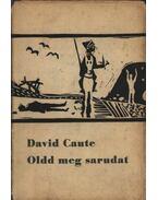 Oldd meg sarudat - Caute, David