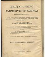 Pest.Pilis-solt-Kiskun Vármegye I.kötete