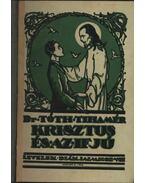 Krisztus és az ifjú