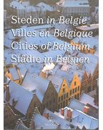 Steden in Belgie