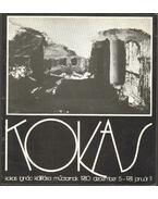Kokas Ignác kiállítása - Csorba Géza