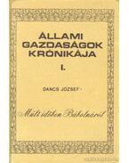 Múlt időben Bábolnáról (1268 - 1960) - Dancs József