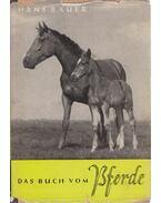 Das Buch vom Pferde