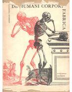 De Humani Corporis Fabrica - Vesalius, Andreas