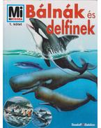 Bálnák és delfinek - Deimer, Petra