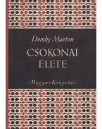 Csokonai élete - Domby Márton