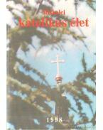 Miskolci katolikus élet - Dr. Berkes László (szerk.), Gróf Lajos