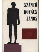 Szántó Kovács János születésének 125. évfordulójára - Dr. Rácz János (szerk.)
