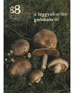 88 színes oldal a leggyakoribb gombákról - Dr. Rimóczi Imre