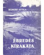 Ébredés kirakata (dedikált) - Hámori Attila