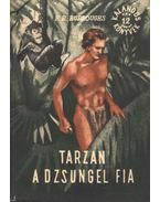 Tarzan a dzsungel fia - Edgar Rice Burroughs