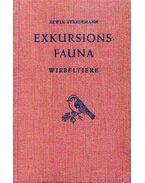 Exkursionsfauna III. Wirbeltiere (Kirándulás az állatvilágba III. Gerincesek: halak, kétéltűek, madarak, emlősök) - Erwin Stresemann